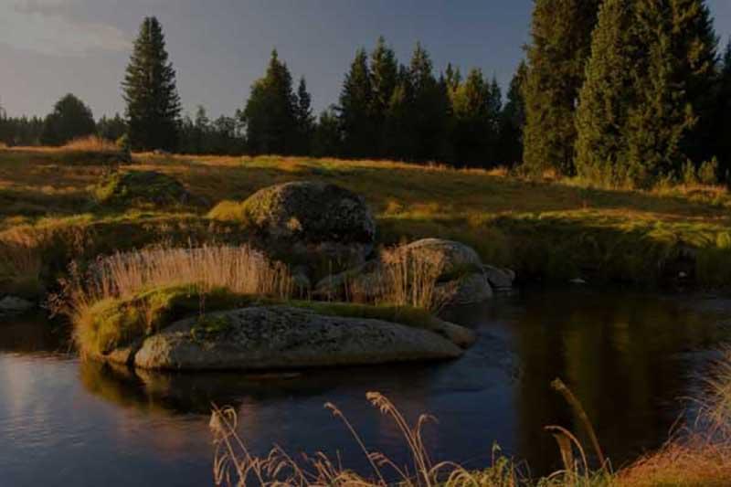 roklanský-potok-šumava